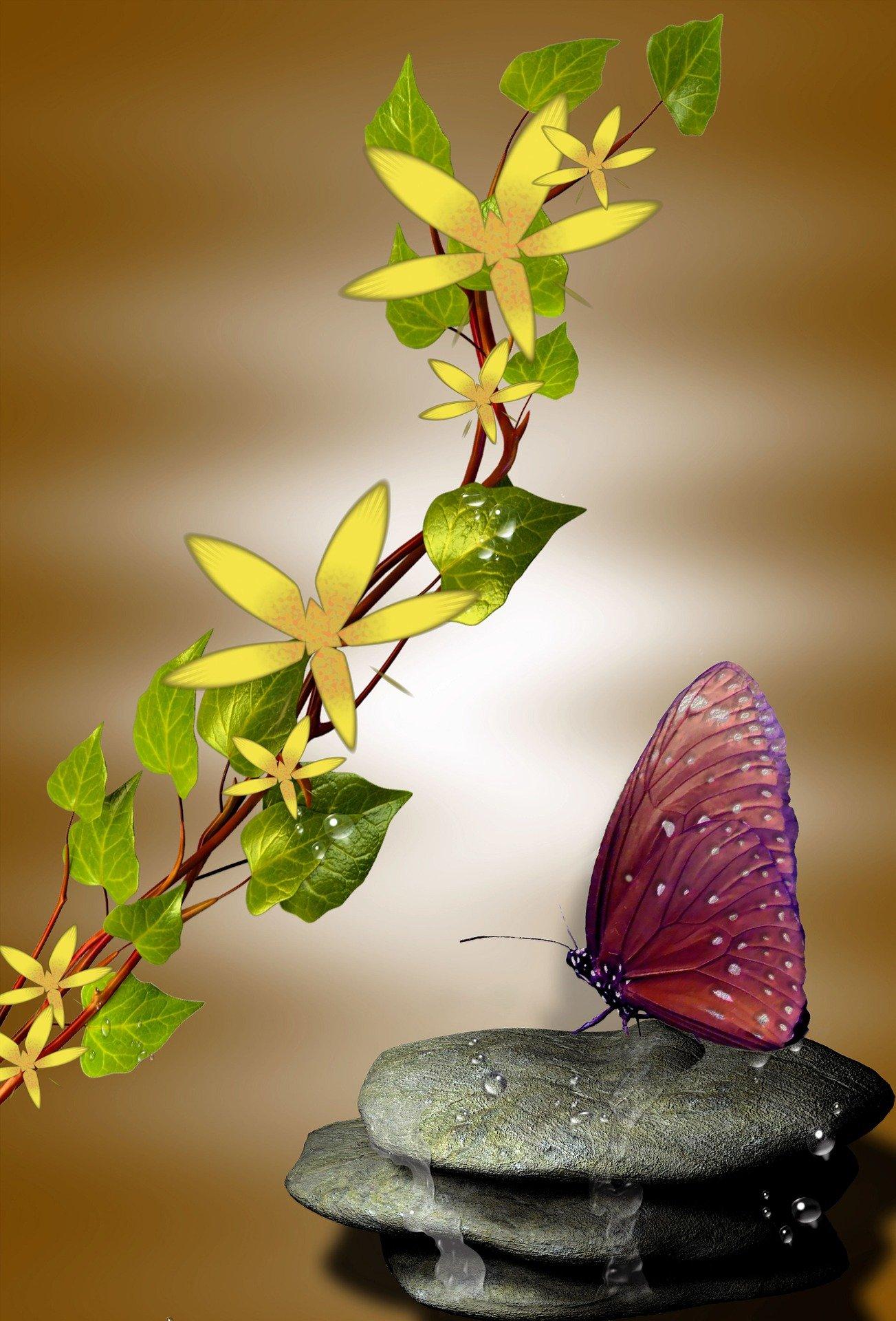 Flower, stone, butterfly